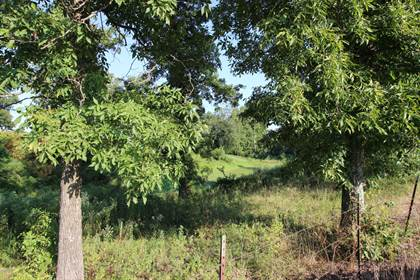 Lots And Land for sale in XX Norway Road, Monark Springs, MO, 64850
