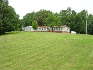 Residential Property for sale in 295 Woodhaven Lane, Grantsburg, IL, 62943