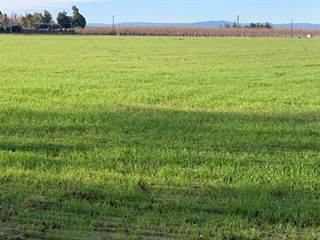 Farm And Agriculture for sale in 1009 Patterson Road, Modesto, CA, 95356