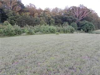Land for sale in 00 Van Buren Road, Stoneville, NC, 27048