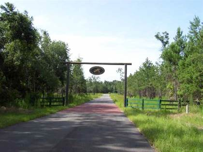 Lots And Land for sale in Tract 6 Cavallo Trail, Lloyd, FL, 32344