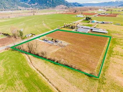 Agriculture for sale in 37424 LOUGHEED HIGHWAY, Nicomen Island, British Columbia