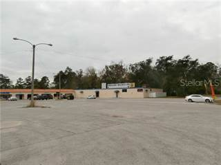 Comm/Ind for sale in 955 CANDLELIGHT BOULEVARD, Brooksville, FL, 34601