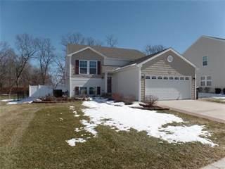Single Family for sale in 3744 AMBER OAKS Drive, Howell, MI, 48855