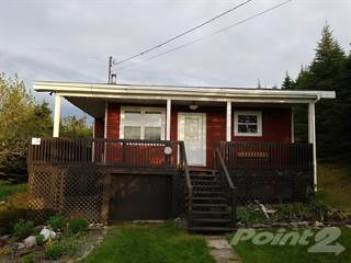 Residential Property for sale in B46 Salmonier Line, Greater Riverhead, Newfoundland and Labrador
