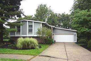 Single Family for rent in 3335 Jasper, Troy, MI, 48083
