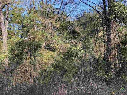 Lots And Land for sale in TBD Beverly Dr., Hughes Springs, TX, 75656