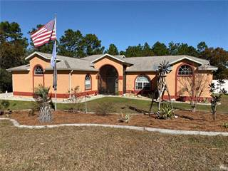 Single Family for sale in 3659 W Boulton Street, Citrus Springs, FL, 34433
