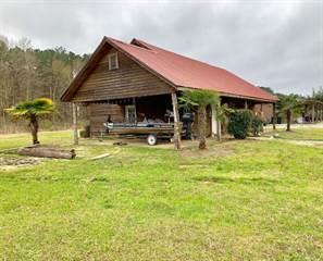 Single Family for sale in 53 Lake Eddins 163810A, Pachuta, MS, 39347