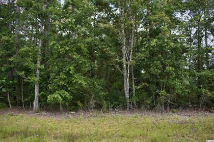 Lots And Land for sale in TBD Highway 707, Murrells Inlet, SC, 29576