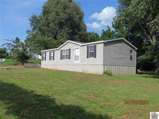 Residential Property for sale in 251 Elm St., Bardwell, KY, 42023