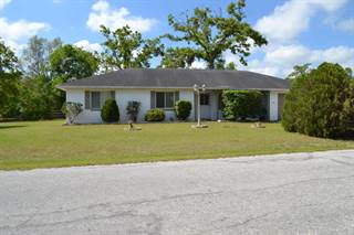 Single Family for sale in 410 Bahia Trak, Ocala, FL, 34472