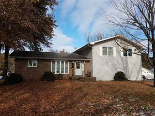 Single Family for sale in 509 East Putnam Street, Mount Olive, IL, 62069