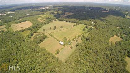 Farm And Agriculture for sale in 145 Huey Dr, Bowdon, GA, 30108