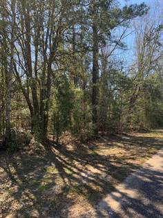 Lots And Land for sale in 000 Wilkie Mosley Rd, Blakely, GA, 39823