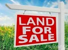 Land for sale in 735 West 48th Place, Chicago, IL, 60609