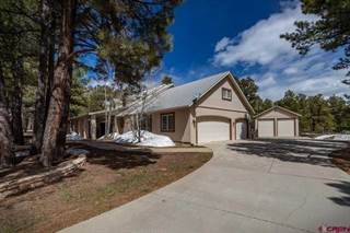 Single Family for sale in 1647 N Pagosa Boulevard, Pagosa Springs, CO, 81147