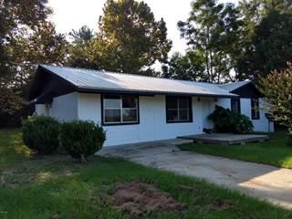 Single Family for sale in 1083 NEWTON Road, Esto, FL, 32425