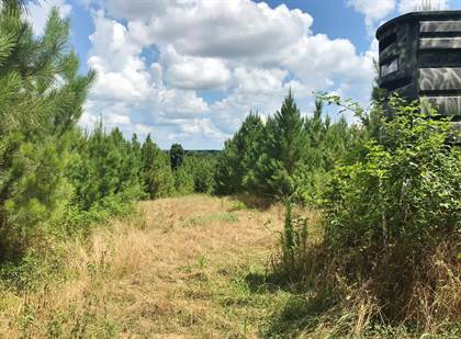 Lots And Land for sale in 000 MS Hwy 33, Roxie, MS, 39661
