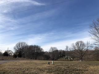 Land for sale in 5363 BLACKBERRY Lane, Coloma, MI, 49038