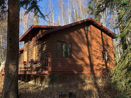 Residential Property for sale in NHN PARKS HIGHWAY 307 Parks Hwy 4 Mile Rd, Nenana, AK, 99760