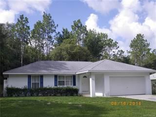 Single Family for sale in 3210 E Davis Lane, Inverness, FL, 34453