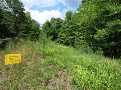 Lots And Land for sale in 0 Long Hollow, Evans, WV, 25271