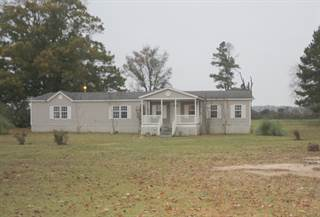 Residential Property for sale in 1129 RD 189, Blue Springs, MS, 38828