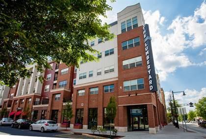 Apartment for rent in 595 N. Atlantic Avenue, Collingswood, NJ, 08108