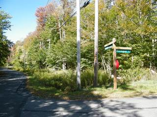 Land for sale in PIONEER TRAIL, Pocono Pines, PA, 18350