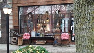 Other Real Estate for sale in 115 N Main, Atwood, IL, 61913