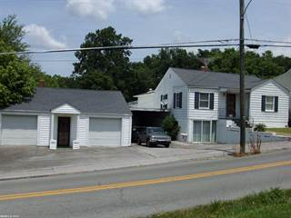 Single Family for sale in 169 Dunn Street, Peterstown, WV, 24963