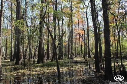 Lots And Land for sale in No address available, Gillett, AR, 72055