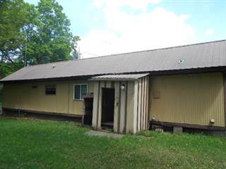 Single Family for sale in 6672 Walnut, Florence, WI, 54121