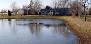 Single Family en venta en 363 Temple Hill Road, Golconda, IL, 62938
