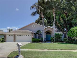 Single Family for sale in 1798 MARSH WREN WAY, Palm Harbor, FL, 34683