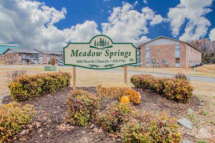 Apartment for rent in Meadows Springs Apartments, Mountain Home, AR, 72653