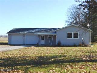 Single Family for sale in 3544 Farthing Road, Odin, IL, 62870