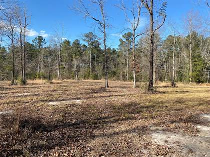 Lots And Land for sale in 000 Hwy 589, Sumrall, MS, 39482