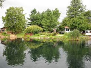Single Family for sale in 868 12 Highway, Tower Hill, IL, 62571