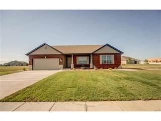 Single Family for sale in 9730 Quapaw Court, Mascoutah, IL, 62258