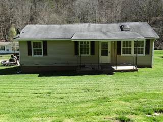 Single Family for sale in 176 Lilac Lane, Mount Zion, WV, 26151