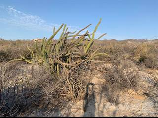 Lots And Land for sale in Build your dream home in this piece of paradise, La Paz, Baja California Sur