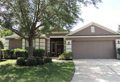 Residential Property for sale in 8205 PINEWOOD RUN COURT, Tampa, FL, 33647