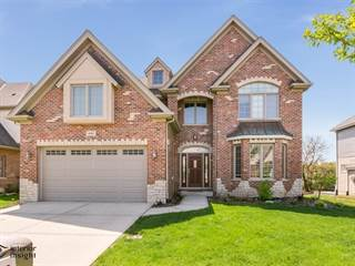 Single Family for sale in 16810 Sheridans Trail, Orland Park, IL, 60467