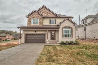 Single Family for sale in 3215 Rift Lane, Murfreesboro, TN, 37130