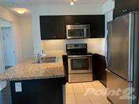 2 Bedroom Apartments For Rent In Downtown Toronto Point2