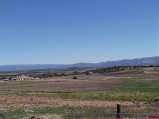 Farm And Agriculture for sale in 956 County Road 314, Ignacio, CO, 81137