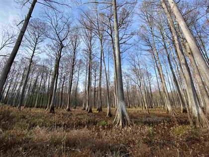 Lots And Land for sale in 0 VAIDEN-KILMICHAEL RD, Kilmichael, MS, 39747
