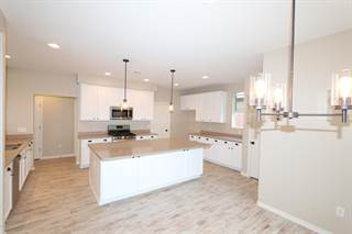 Single Family for sale in 17148 S Painted Vistas Way, Corona de Tucson, AZ, 85641